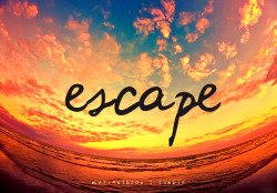 Escape. Your freedom is yours for the taking.