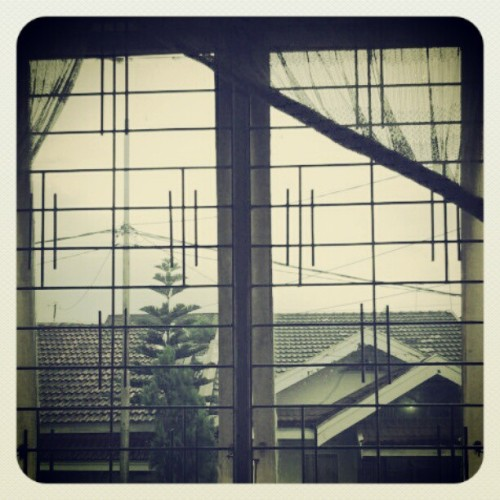View from window. #Vicoh #view #tree #roof #gloomy #sky #calm #afternoon #comforting  (Taken with instagram)
