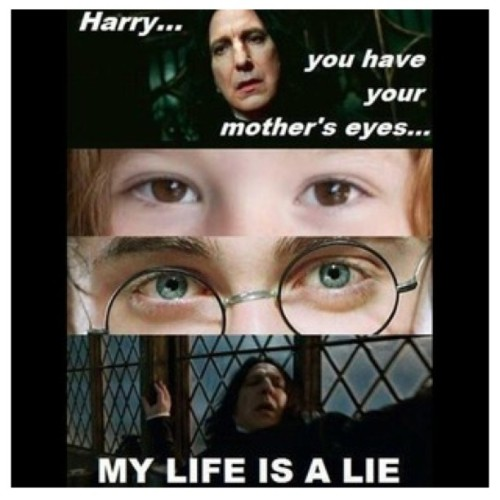 LOL #harrypotter #lilypotter #severussnape #LOL #ROTFL (Taken with instagram)