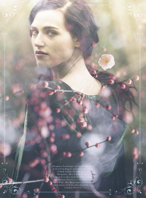 TEN DAY MERLIN CHALLENGE → Day 2: Favourite Female Character; Morgana