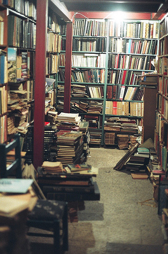 booklover:  54780003 (by gültennur batmaz)