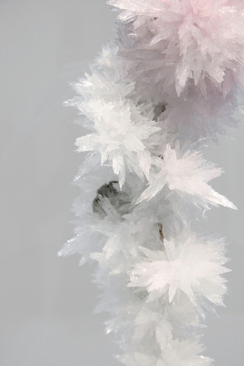 crystal-gem:  All new crystals and things blog! crystallized- http://crystal-gem.tumblr.com/