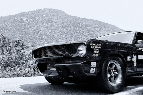 Shelby Mustang GT350 in La Sierra of Oaxaca during La Carrera Panamericana 2009.