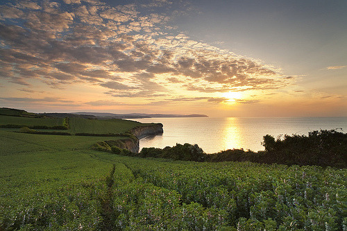 Somerset Coast (by peterspencer49)