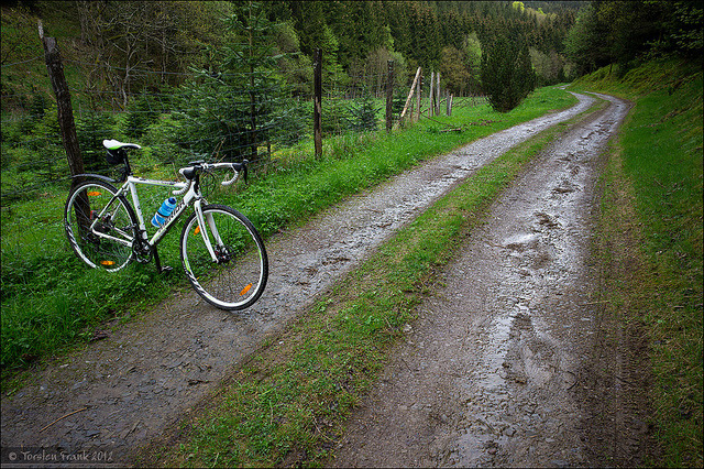 Merida at Oberhundem Forresttrail by Torsten Frank on Flickr.