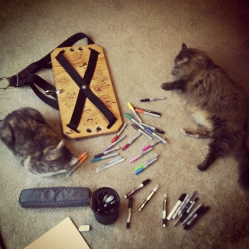 My not so helpful assistants  (Taken with instagram)