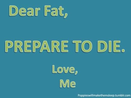 healthyandvibrant:  Hello Fat. My name is Inigo Montoya. You killed my father. Prepare to die.