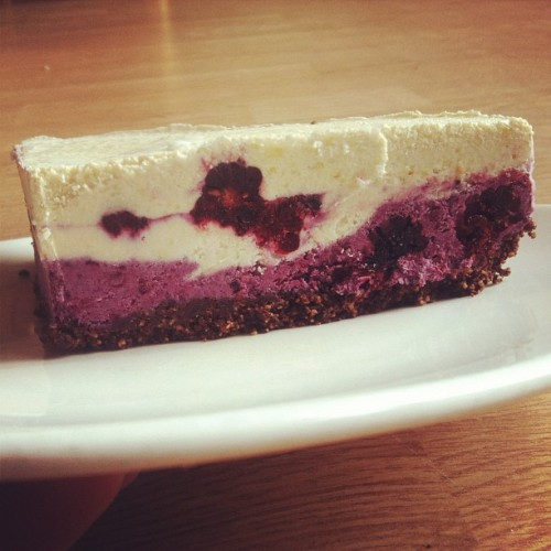 I made raw blackberry cheesecake and it's delicious, ignore the mortally wounded warrior.