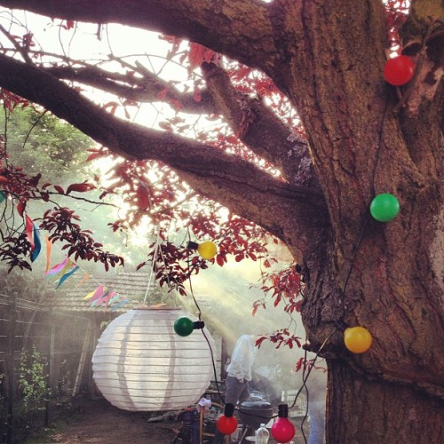 #garden #party #tree (Pris avec instagram)