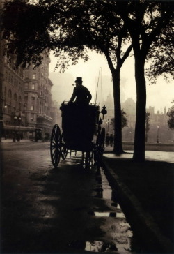 Central Park, New York, 1900's. Anonymous | Robert Flynn Johnson