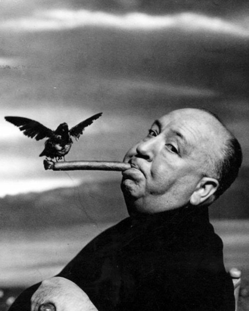artruby:  Mr.Hitchcock by Philippe Halsman.