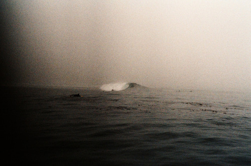cannolis:  untitled by Maddie Joyce on Flickr.
