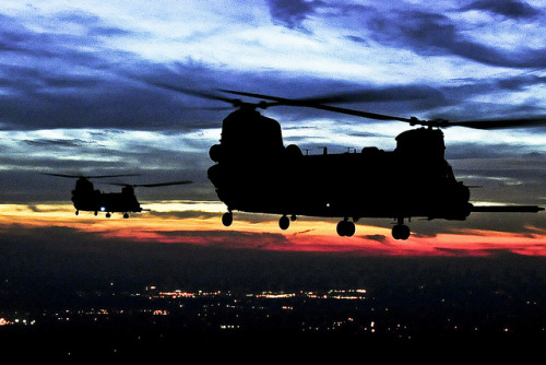 Evening flight by The U.S. Army on Flickr.