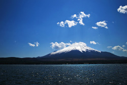 japanesedream:  山中湖(Lake Yamanakako) Fuji Five Lakes (by punipuki)