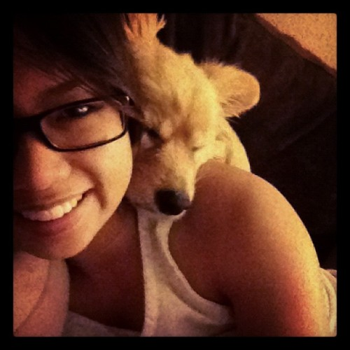 Her new favorite place to sleep! LOL #lovethispup #fav #shesaweirdo (Taken with instagram)