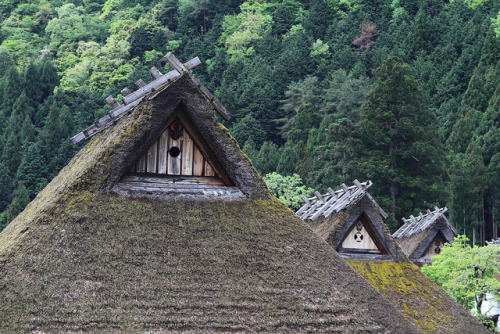 The roofs of traditional farmhouses by Teruhide Tomori on Flickr.