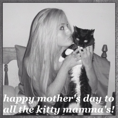 Happy Mother's Day to all of us kitty Mamma's, too! 😍 #aww #bicolorcat #baby #beautiful #cat #cats #catstagram #catsofinstagram #cute #furbaby #gatto #gato #hugs #ilovemycat #kitty #love #mothersday #mylove #myson #mybaby #petsofinstagram #rainbowbridge (Taken with instagram)