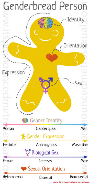 "lacigreen:  all the versions of ""genderbread"" i've seen are oversimplified & have issues, but it still dispels many of the basic misconceptions out there!"