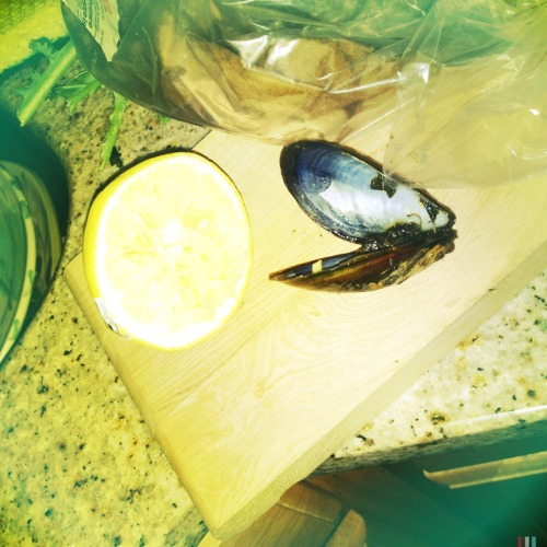 #lemon #mussel #aftermath Jimmy Lens, Blanko Freedom13 Film, Standard Flash, Taken with Hipstamatic