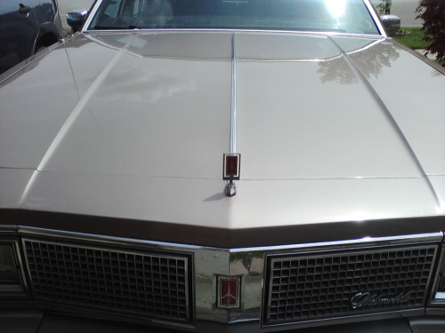 My 1983 Oldsmobile Regency Ninety Eight
