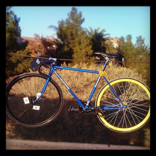 Oh hey honey. You haven't been forgotten. #schwinn #fixed #nobrakes #vegas #railroad tracks  (Taken with instagram)