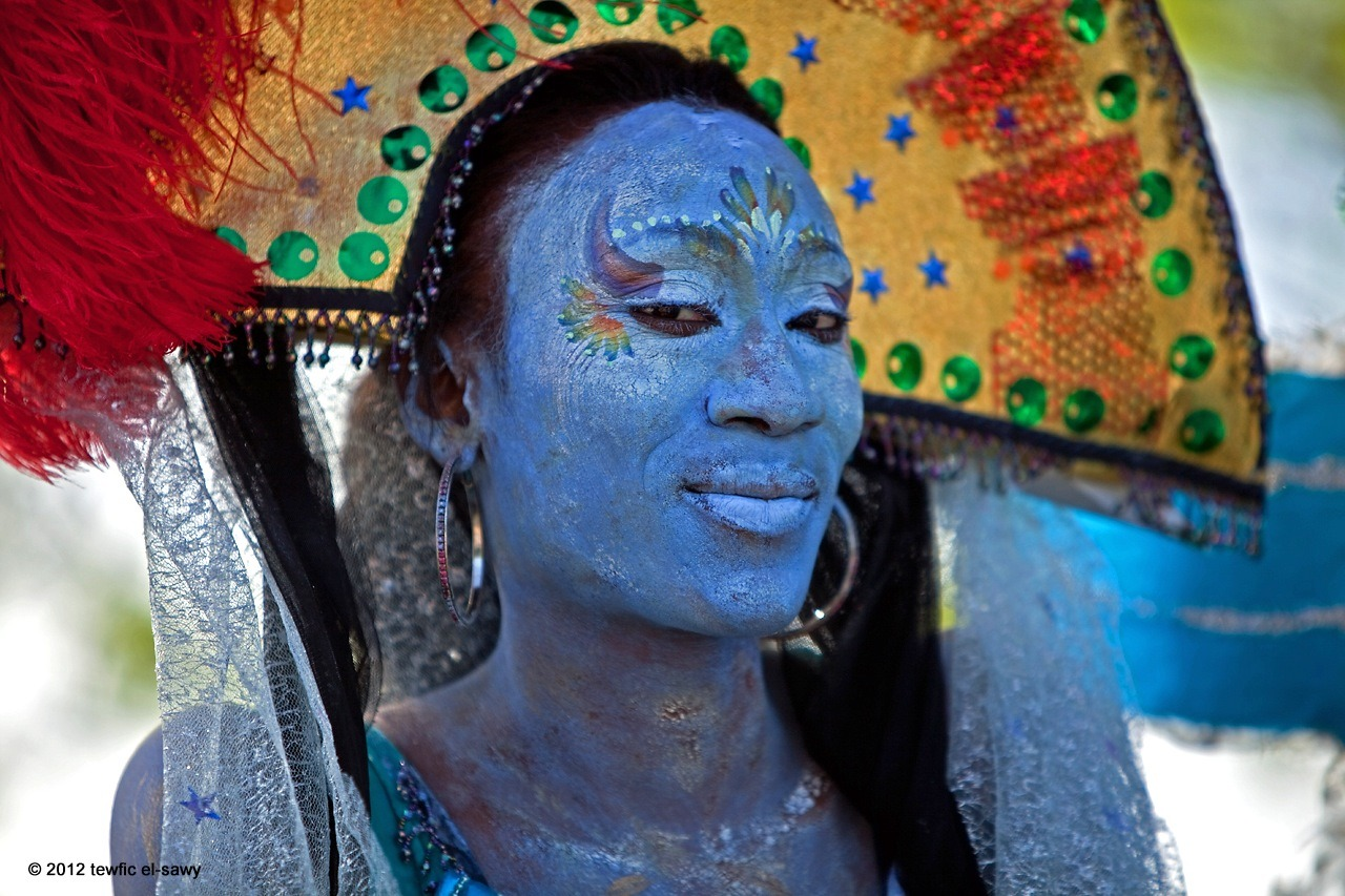 """Avatar"". Hudson River Pageant, NYC. ©2012 Tewfic El-Sawy"