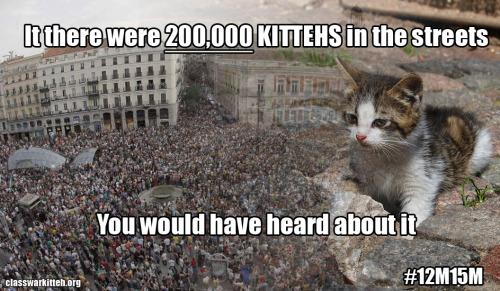 If there were 200,000 kitteh's in the streets, you would have heard about it. #12M15M Kitteh Source. Spanish Revolution picture by Getty Images