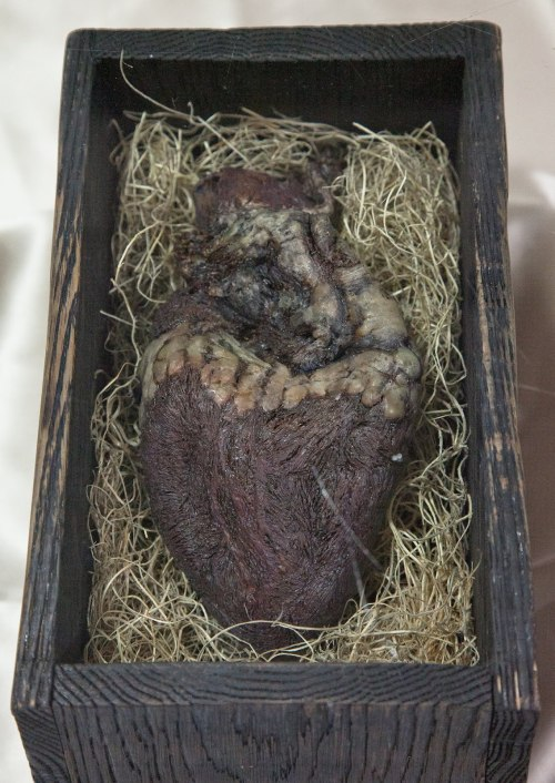 "oraclesofthefortuneteller:  Philip Obermarck brings us the mummified heart of a Norse giant. While going through his famous grandfather's belongings after his passing in 1937, violinist Lars Sigerson discovered this casket with its gruesome contents. It appears to have been passed from generation to generation within his family for hundreds of years. The explanation and whatever story that goes with it has been lost to the ages. The inscription on the casket is written in old Norse runes and reads: ""Behold! Within this casket lies the heart of the fierce and terrible giant known as Hrungnir, slain this day by Fafrd the Red whose bravery and cunning shall live forever!"""