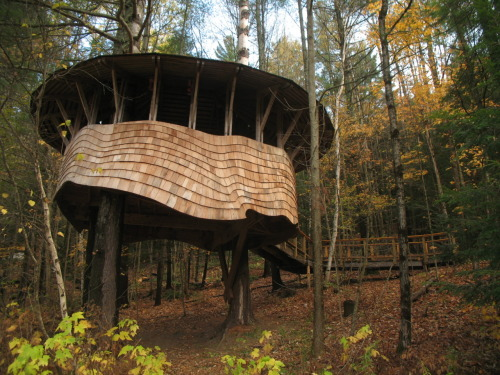 cabinporn:  Public treehouse designed and built by students at the Yestermorrow school.  If you walk about 1 minute through those woods, you'll be at my house!