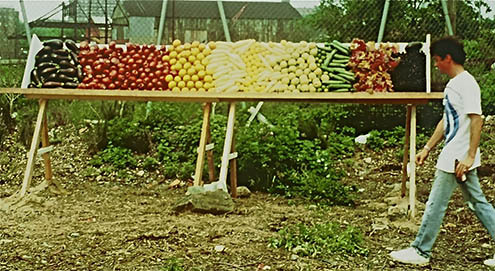 the color spectrum in fruits and vegetables   1988   socrates sculpture park, long island city