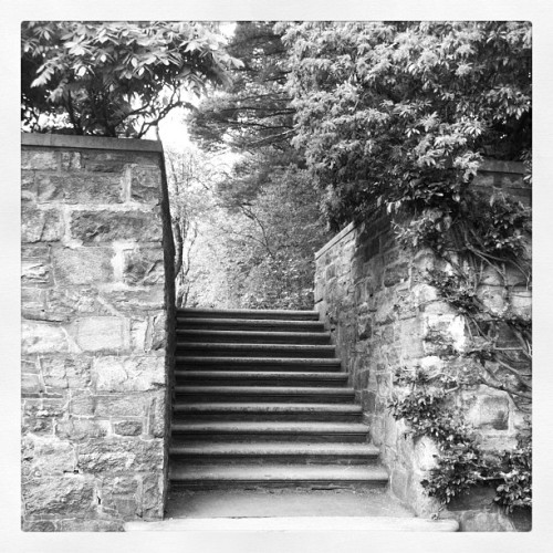 #stairs #nature #ig #instagram #instagramhub #likes #tree #sky  (Taken with instagram)
