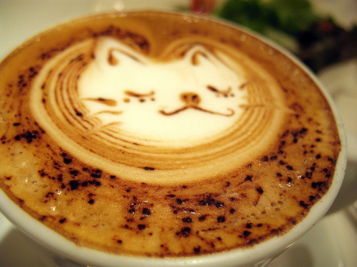 Cafe Latte by BUN BUKU on Flickr.There is a cat in this coffee.