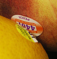 "drjayweber:  What does the number on a fruit sticker mean? 7 out of 10 items in grocery store shelves contain ingredients that have been genetically modified. Fruit and vegetables do not come with nutrition labels but they do have stickers (PLU – Price Look Up Code) which contain pertinent information. Next time you decide to purchase that apple or cut a slice out of that melon, consider the PLU sticker. This sticker will tell you whether the fruit was organically grown, genetically modified, or produced with chemical fertilizers, herbicides or fungicides. PLU stickers that have 4 digits and begin with a ""3″ or ""4″: produce is conventionally grown. This means that this produce was sprayed with weed killers and chemical pesticides. PLU stickers that have 5-digits and start with ""8″: produce was genetically engineered (man intervened by manipulating the genes to produce a larger or brighter colored food). This produce may have been chemically treated. PLU stickers that have 5-digits and start with ""9″: produce was raised organically. You can be sure that this produce was not treated with any chemicals. If you see other variations of code on your produce, you can refer to the following website and look up the PLU code as well as other information regarding this topic: http://www.fruitsticker.com. Note: the adhesive used to stick the PLU onto the fruit is edible but the sticker itself is not. Having some origin coding would be great for seeing how far a particular fruit/vegetable traveled but that is something still hidden in our giant supermarkets.  Read More"