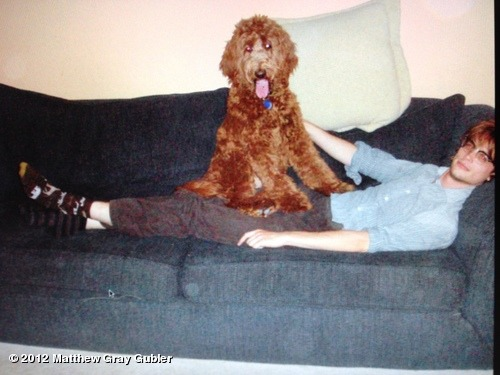 gublernation:  me and an awesome giant dog in 2006 View more Matthew Gray Gubler on WhoSay   Right: pattern - animals, brown, white, & yellow; Left: stripes, black & gray (?).