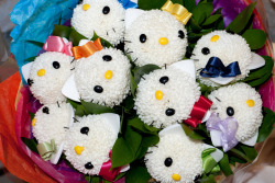 terrysdiary:  Hello Kitty flowers.