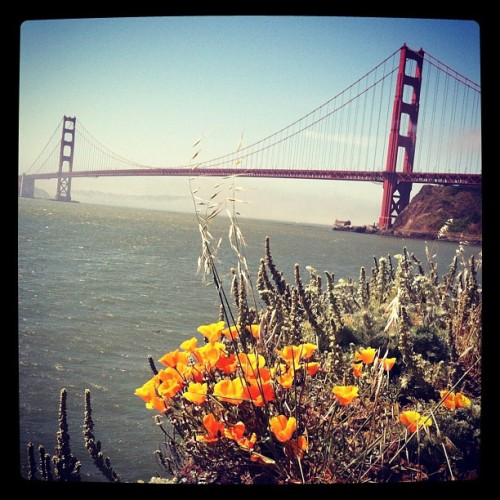 #california #InternationalOrange #opiate (Taken with Instagram at Battery Yates)