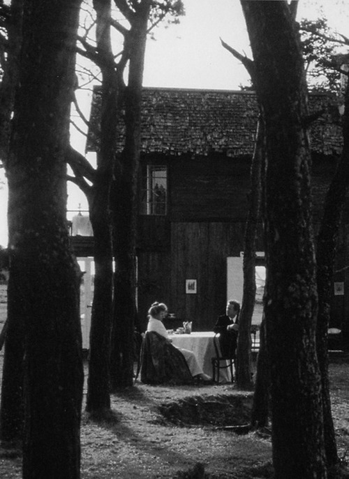 The Sacrifice, by Tarkovsky