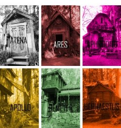 The cabins.I wonder where's Percy's?