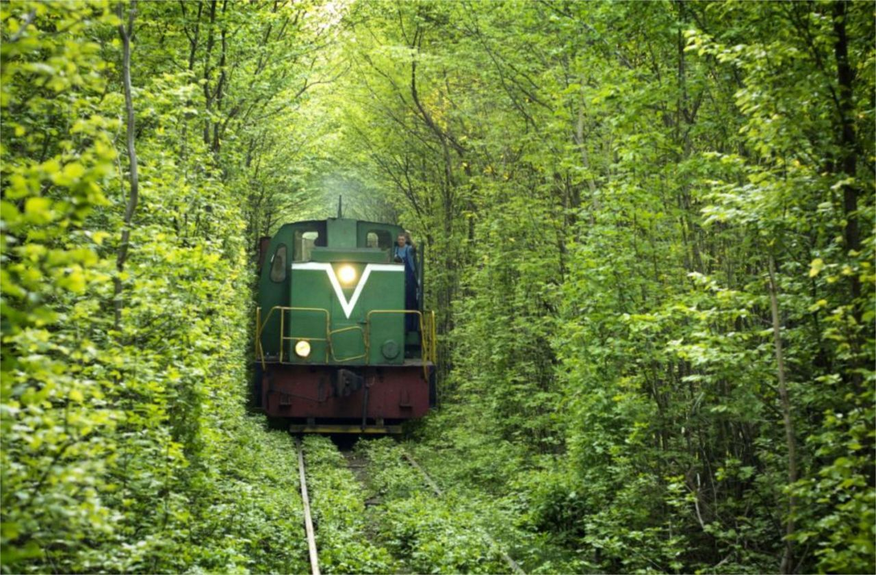 "beconinriot:  The ""Tunnel of Love"" in Ukraine"