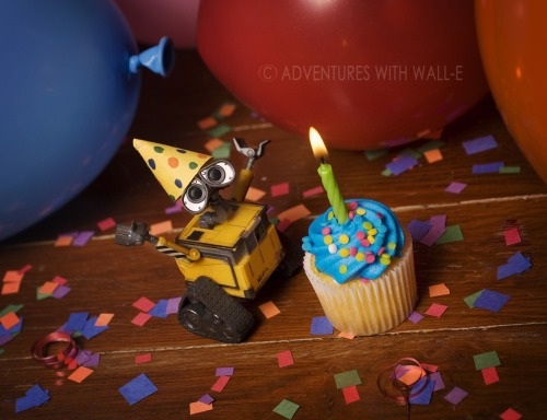 Happy birthday, Wall-e!! I got him a year ago today! http://adventureswithwalle.tumblr.com/post/5481654139/welcome-home-wall-e 135/366