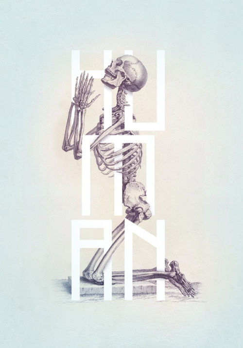 btdtdesign:  Stunning reworking of anatomical illustrations by Josip Kelava
