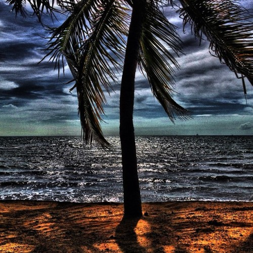 Telok Kemang Beach (Taken with instagram)