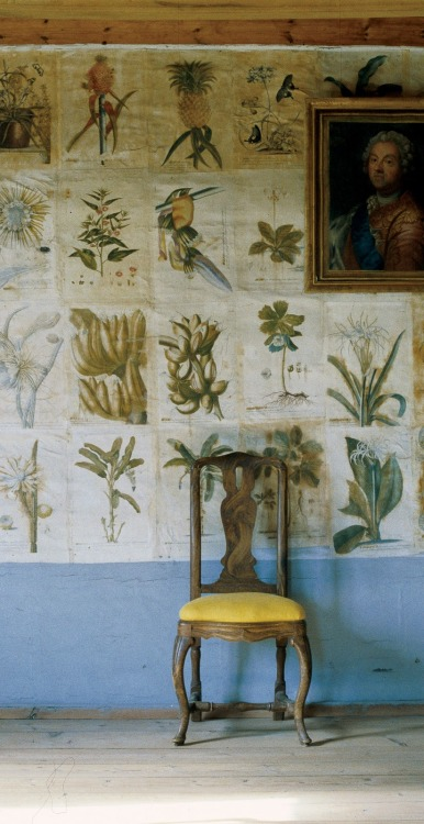 Botanical illustrations (reproductions from the 1700's) on the wallpaper at the Carolus Linnaeus Swedish estate. Photo by Ingalill Snitt.