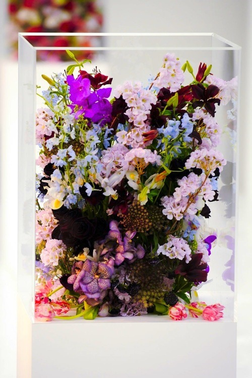 mirnah:  Flowers from the set of Jil Sander FW 2012