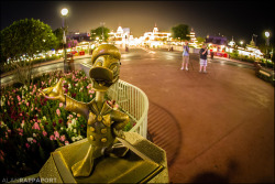 Donald is ready for his closeup #MagicKingdom #Disney #Photo by Alan Rappa on Flickr.