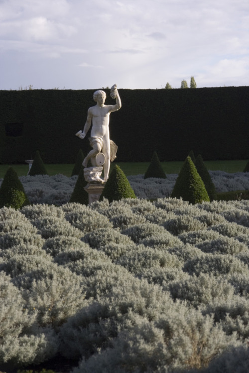 a-l-ancien-regime:  Ham House Garden (by r12a): statue, topiary cones and lavender bushes