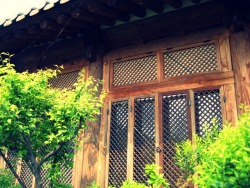 A lattice photo by me Jeonju, South Korea