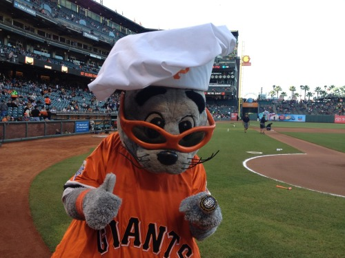 Lou Seal celebrates SFChefs night at AT&T Park - Who's hungry?