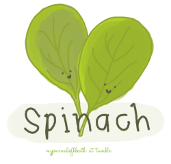 myjournalofhealth:  8 Benefits of Spinach 1. Loaded with Vitamins: like A, K, D, and E and a host of trace minerals. 2. Good Source of Omega 3 Fatty Acids: the kind most of us need in North America. 3. Anti-Cancer and Anti-Inflammatory Antioxidants: Researchers have identified more than a dozen different flavonoid compounds in spinach that function as anti-inflammatory and anti-cancer agents. In a recent study on the relationship between risk of prostate cancer and vegetable intake (including such healthy vegetables as broccoli, cabbage, and brussel sprouts) only spinach showed evidence of significant protection against the occurrence of aggressive prostate cancer. 4. Alkalizes the Body: All those minerals helps to balance off the highly acid diet which most of us subject our bodies to and which drains our energy, increases obesity and a creates host of other health problems. 5. Nourishes the Eyes: The carotenoids found in spinach protect against eye diseases such as cataracts and macular degeneration. 6. Strengthens the Bones: One cup of fresh spinach (or 1/6 cup of cooked spinach) contains TWICE your daily vitamin K needs. This along with the calcium and magnesium in spinach is essential to maintain healthy bones. 7. Perfect for Green Smoothies and Salads: Organic pre-washed spinach is now readily available in most grocery stores. If you haven't yet tried a green smoothie yet and think they might taste yucky then try one with the main ingredient as spinach. Spinach is so sweet, we guarantee you will be impressed. 8. Spinach is FRESH! Studies have shown that even the artificial light in the grocery store shining on those plastic tubs of spinach can actually help keep the leaves from spoiling. This indicates the spinach is still metabolically active and fresh. (x)