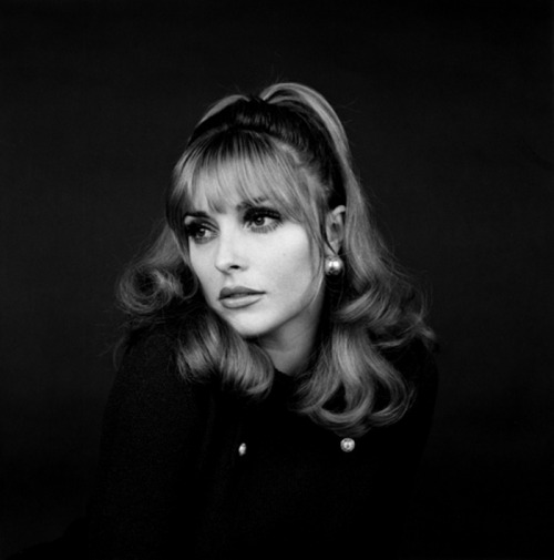 Sharon Tate Photo by Jerry Schatzberg